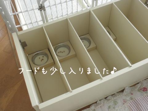 rinyuusyoku1.jpg