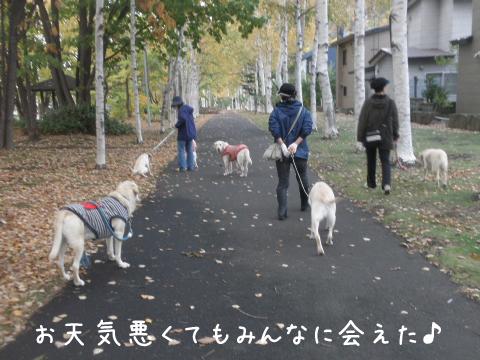 ryokudou_20111025225001.jpg