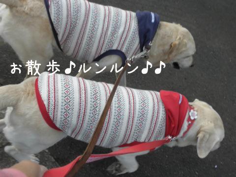sanpo1_20110923215857.jpg