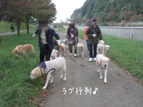 sanpo1_20111008232725.jpg