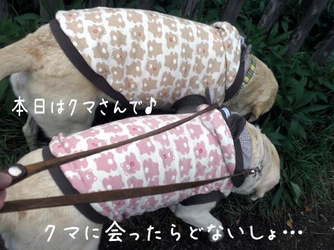 sanpo1_20111015184849.jpg