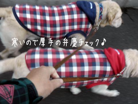 sanpo1_20111018220956.jpg