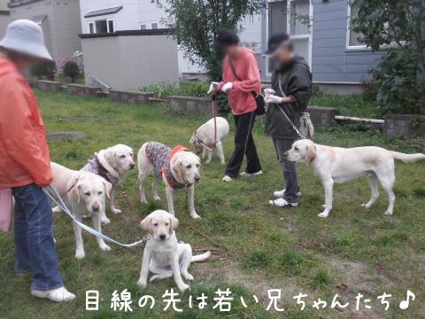 sanpo2_20111014214603.jpg