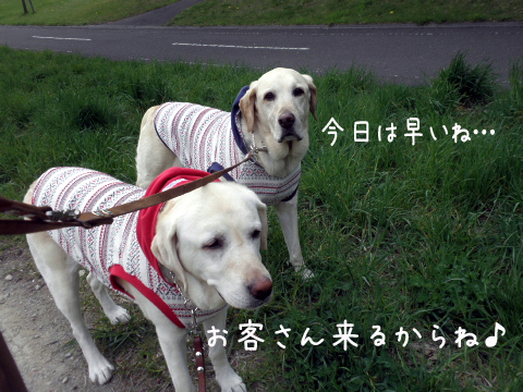 sanpo_20110518221400.jpg