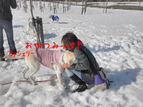 syeri_20110406182400.jpg