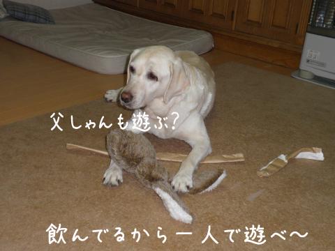 syeri_20110930222416.jpg