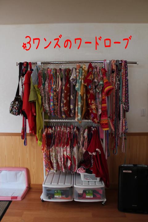 tansu1_20110323210431.jpg