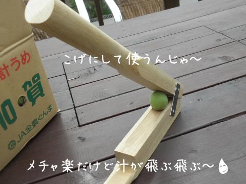 umewariki2.jpg