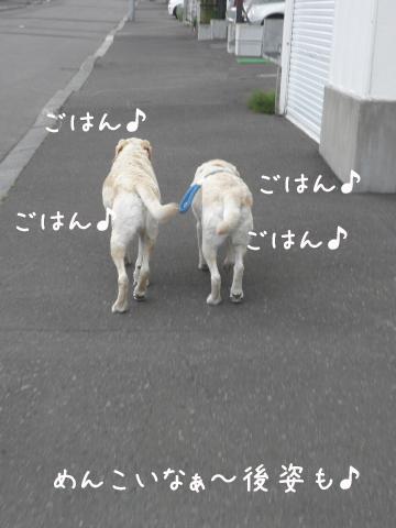 usiro_20110628212548.jpg