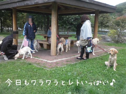 warawara_20111003220807.jpg