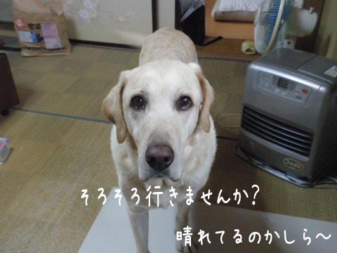 wasitu1_20111025225002.jpg