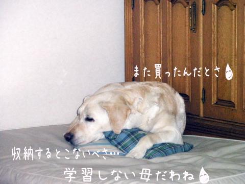 yokubari_20110517172404.jpg