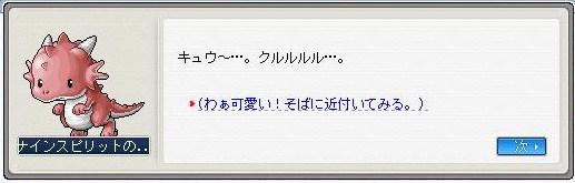 Maple100608_132859.jpg