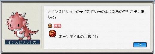 Maple100608_132914.jpg
