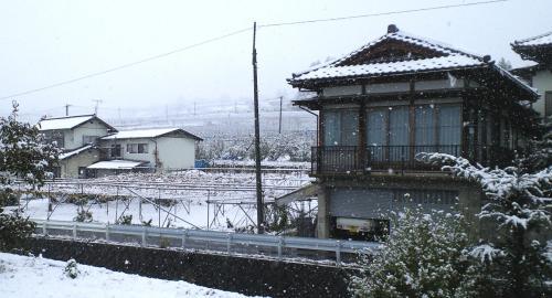 早朝から降り続く雪(25.11.13)