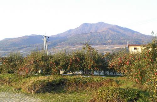 うちのリンゴ畑と高社山(25.11.9)