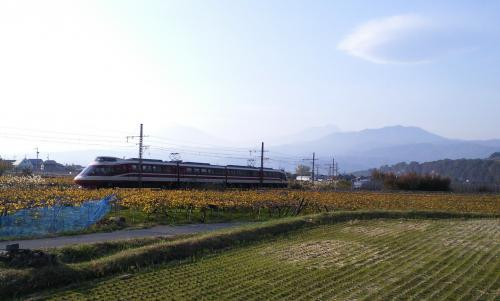 特急ゆけむり号とレンズ雲(25.11.9)