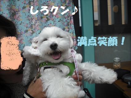 2009_020306.jpg