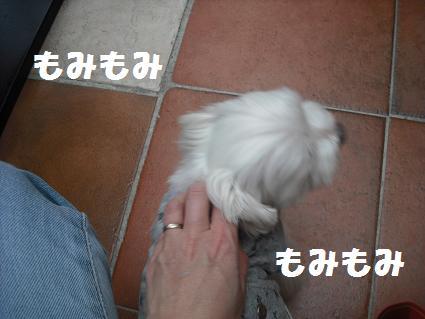 2009_020310.jpg