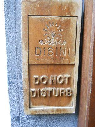 ディシニ (18)