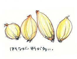 09_05_ill_01.jpg