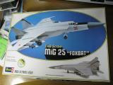 aMiG-25_013.jpg