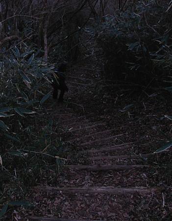 toukaidou_200912_12.jpg