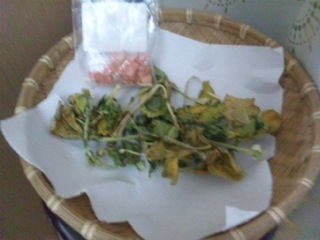 1102干し野菜