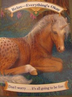 2008-1-6 384