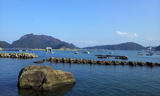 由幸さんの前の海