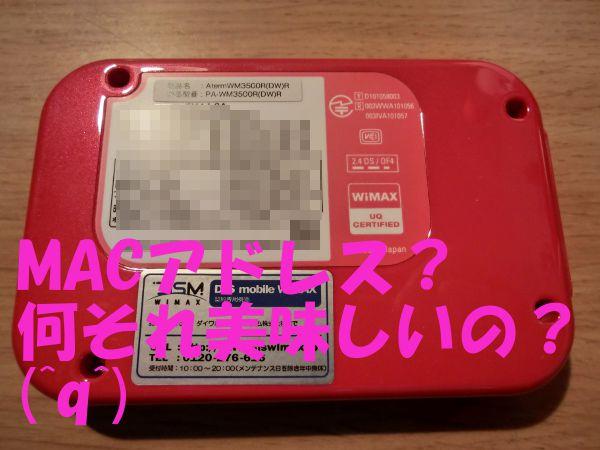 CIMG1563.jpg