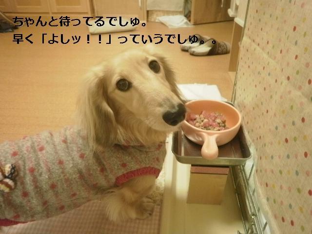 P1110005_20130303201819.jpg