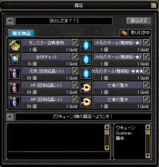 SRO[2011-01-08 21-22-47]_28