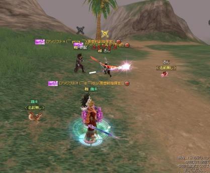 SRO[2011-01-19 00-18-58]_87