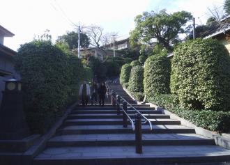 14 南洲神社入り口 (36%)