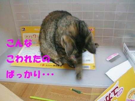 おもちゃ箱③