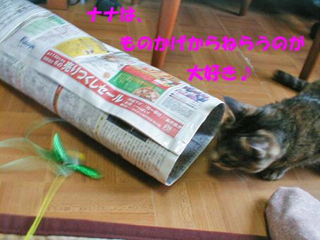 新聞紙トンネル②