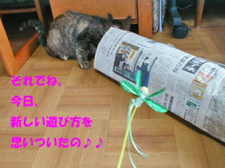 新聞紙トンネル③