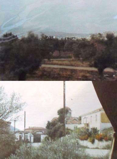 ギリシャのオリーブ畑と田舎