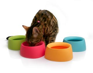 yummyフードボウルと猫