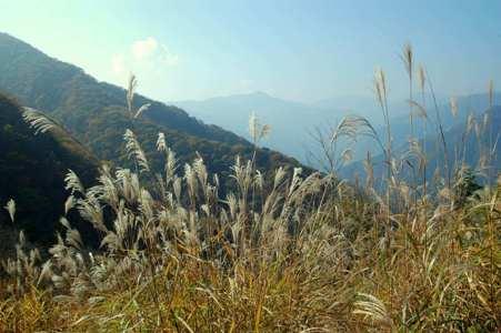 瘤高山への道からの眺望