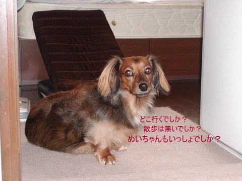 001_20110911171326.jpg