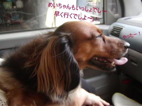 006_20110911171717.jpg