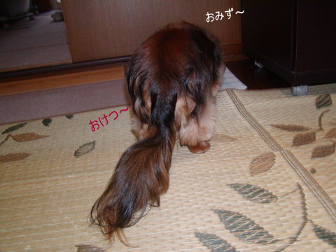 032_20110712150921.jpg