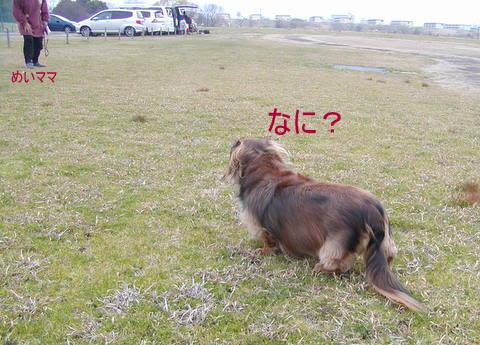 060_20110321232158.jpg