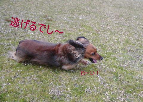 061_20110321232357.jpg