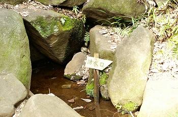おとめ山公園湧水口