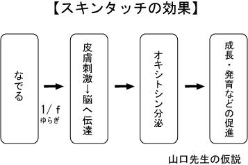 山口先生の講演2010年2月オキシトシン分泌論