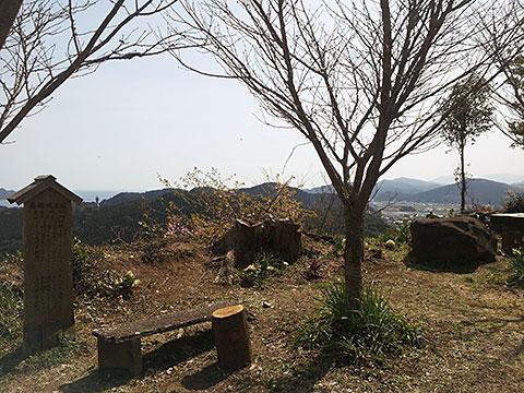 20130221_130350.jpg