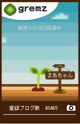 9本目の樹の芽生え